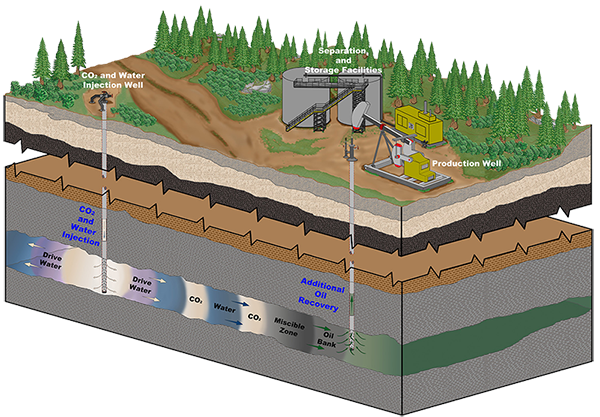 schematic diagram of enhanced oil recovery with CO2 and water